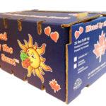 Fruit Packaging